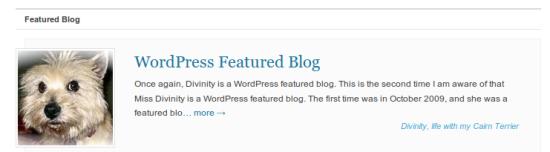 WordPress Featured Blog
