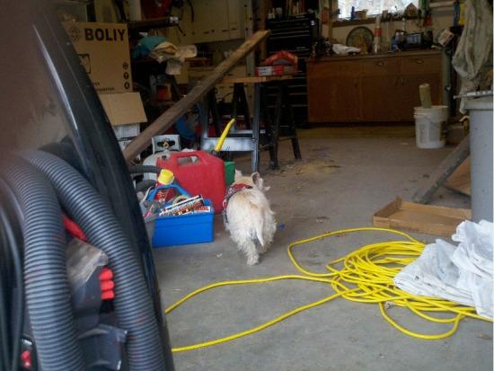 Divinity exploring a garage