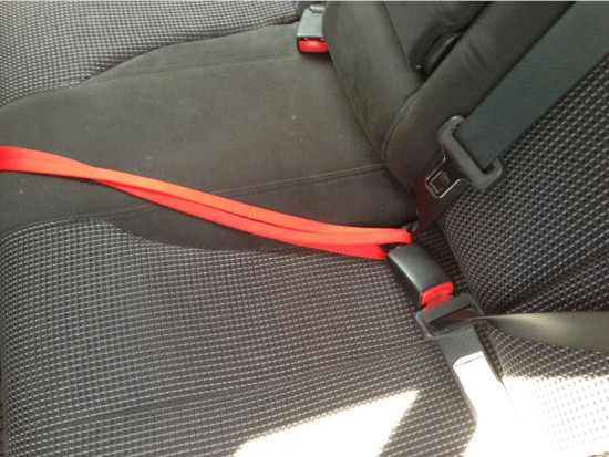 Leash ends looped through car's seat belt