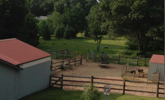 Divinity's Farm