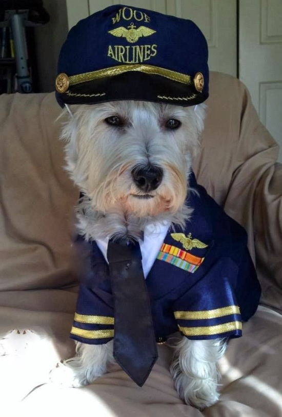 Woof Airlines