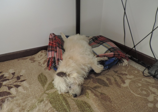 A Deep Sleeps