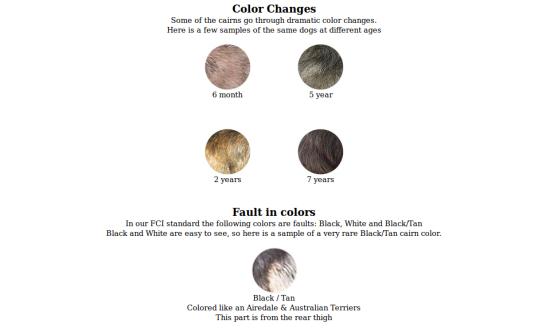 Change Colours