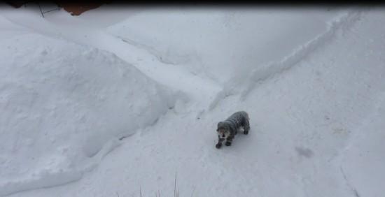 A Snow Cairn
