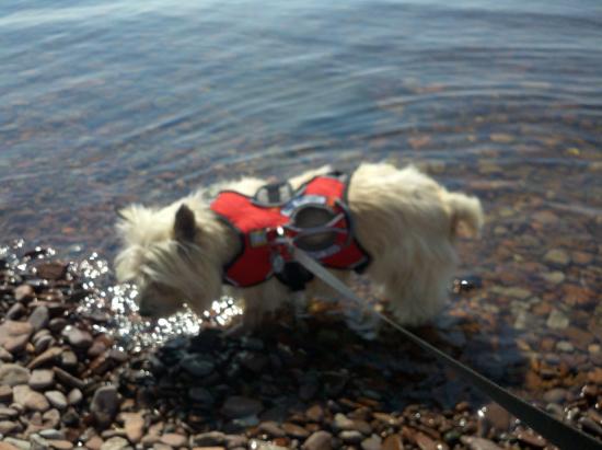 Wading in Lake Superior - Thunder Bay, Ontario Canada
