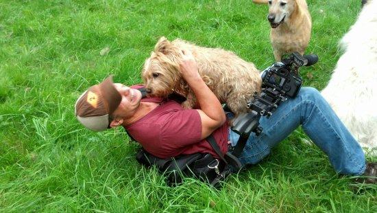 Grey Muzzle Rescue & Sanctuary