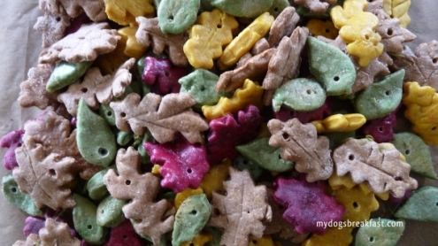 Autumn Leaf Dog Treats