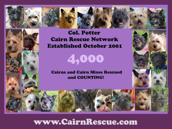 Col. Potter 4,000 Rescues