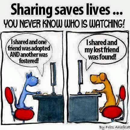 Sharing Saves Lives