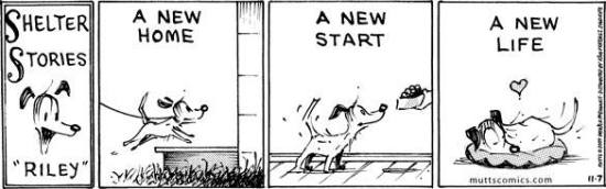 A New Home, A New Start, A New Life