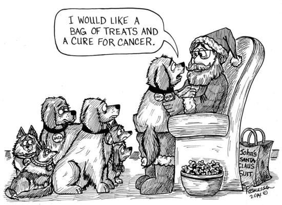 A dog's wish from Santa
