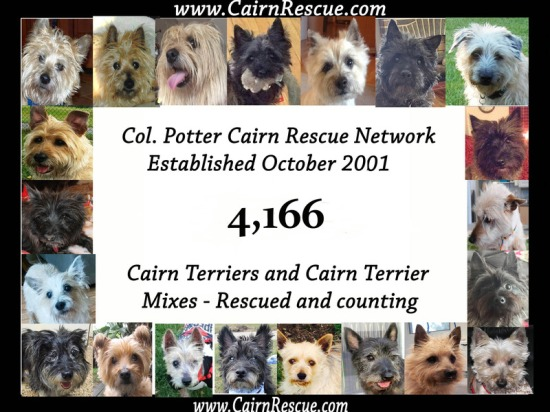 Col. Potter Cairn Rescue - 4,166 Rescues