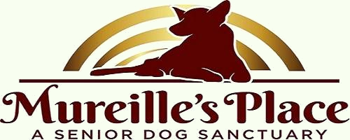Mureille's Place - A Senior Dog Sanctuary