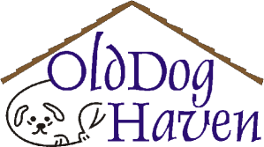 Old Dog Haven