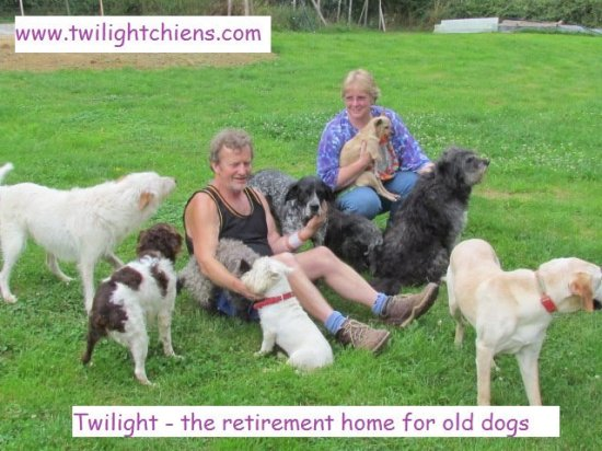 Twilight - A Retirement Home for Dogs