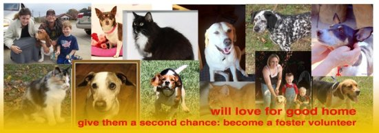 Second Chance Pals