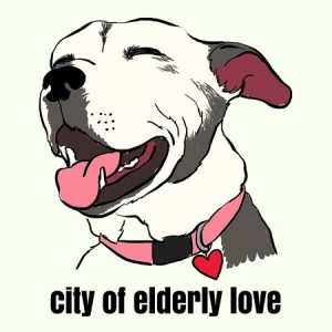 The City of Elderly Love Rescue