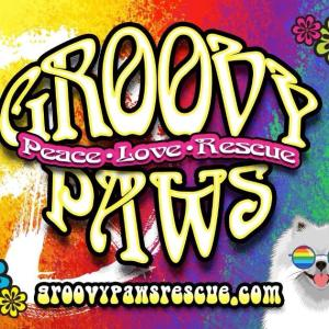 Groovy Paws Rescue