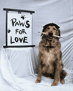 Paws for Love