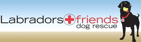 Labradors and Friends Rescue Group