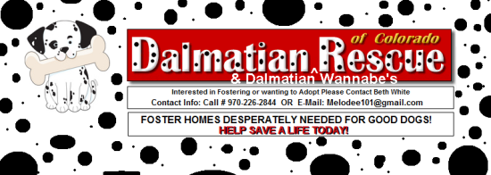 Dalmation Rescue of Colorado - logo