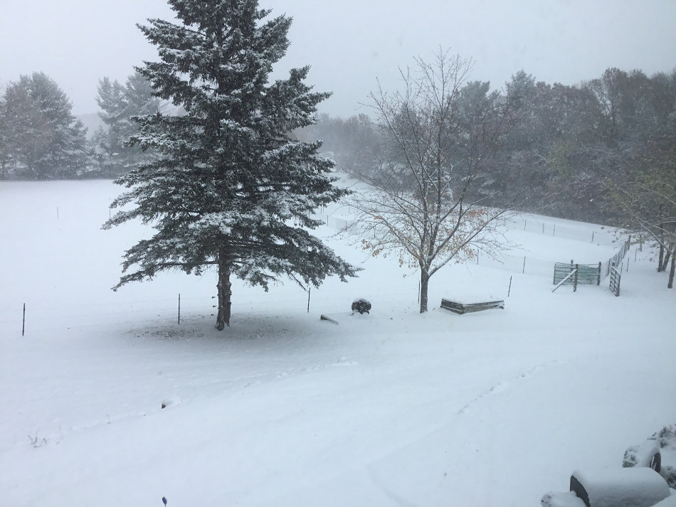 This image has an empty alt attribute; its file name is october-snow.jpg